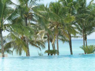 Ein blitzblauer Swimmingpool, im Hintergrund Palmen und das Meer