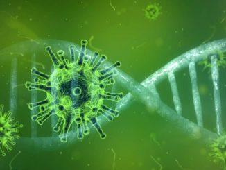 Viruszelle vor grüner Matrix
