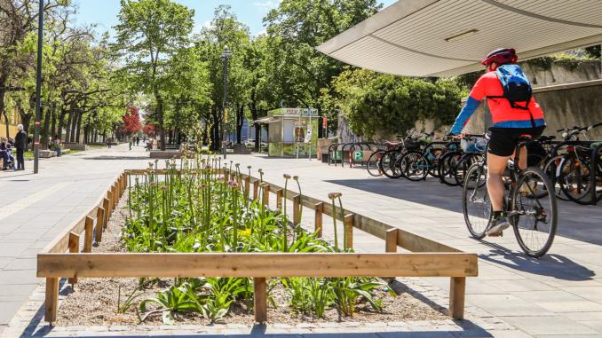 Grüninsel mit Radfahrer in der Stadt