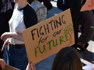 Demo-Schilder bei Fridays for Future